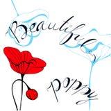 Beautiful poppy Royalty Free Stock Photos