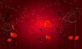 Beautiful poppy field. Vector beautiful poppy field illustration Stock Images