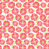 Beautiful Poppy Flowers set, Colorful Vector seamless pattern. Poppy Flowers set, Colorful Vector seamless pattern Stock Image
