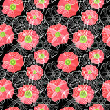 Beautiful Poppy Flowers set, Colorful Vector seamless pattern. Poppy Flowers set, Colorful Vector seamless pattern Stock Images