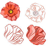 Beautiful poppy flowers. Spray paint. Freehand drawing in Vintag Royalty Free Stock Images