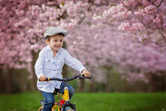 Beautiful portrait of adorable little caucasian boy, riding a bi Royalty Free Stock Photos