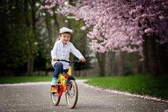 Beautiful portrait of adorable little caucasian boy, riding a bi Stock Photos