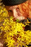 Beautiful portrait in closeup of a smiling young elegant red-haired woman in hat in the bush with yellow forsythia flowers royalty free stock image