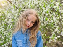 A beautiful portrait of a girl in a denim shirt with her hair down in a cherry orchard. Royalty Free Stock Photography