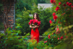 Beautiful portrait of sensual brunette young woman in red dress close to roses Stock Photo