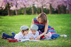 Beautiful portrait of two adorable caucasian boys and mother, re Stock Image