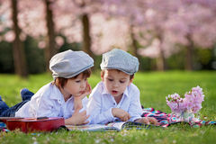 Beautiful portrait of two adorable caucasian boys, reading a boo. K in a cherry tree blooming garden, spring afternoon, kids lying on the grass on a blanket Stock Image
