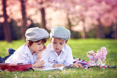 Beautiful portrait of two adorable caucasian boys, reading a boo. K in a cherry tree blooming garden, spring afternoon, kids lying on the grass on a blanket Royalty Free Stock Photo