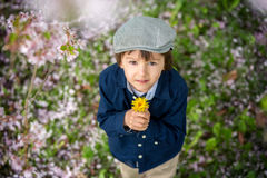 Beautiful portrait of a young preschool child holding flower Royalty Free Stock Image