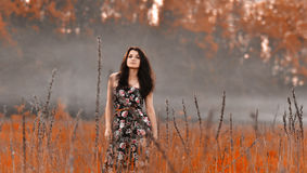 Beautiful,posing,standing,brunette Girl In Red Field, Fog, Autumn Royalty Free Stock Photos