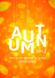 Beautiful poster for autumn sale Stock Images