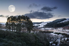 Beautiful pre-dawn Winter landscape over woodland in countryside Stock Image