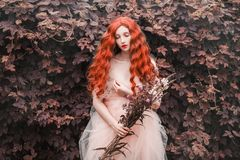 Beautiful pre-raphaelite girl with curly red hair with a flying tulle dress. On the background of a fern stock images