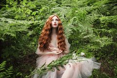 Beautiful pre-raphaelite girl with curly red hair with a flying tulle dress. On the background of a green fern royalty free stock photography