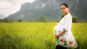 Beautiful Pregnant Asian Woman in Rice Field. Beautiful Asian woman affectionately holding her pregnant belly with newly planted rice field and cloudy sky in Stock Image