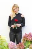 Beautiful pregnant blonde Stock Image