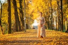 Beautiful Pregnant female in autumn Stock Images