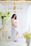 Beautiful pregnant girl in interior with flowers and tulle curtains Royalty Free Stock Photography