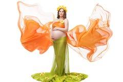 Beautiful pregnant girl Stock Photos
