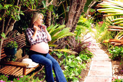 Beautiful pregnant lady Stock Photos