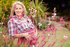 Beautiful pregnant lady Royalty Free Stock Photo