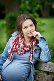 Beautiful pregnant woman. Portrait of beautiful pregnant woman Royalty Free Stock Images