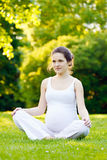 Beautiful pregnant woman. Relaxing in the park Stock Photo