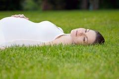 Beautiful pregnant woman Stock Image