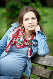 Beautiful pregnant woman Royalty Free Stock Photo