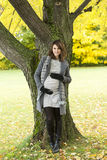 Beautiful pregnant woman in the autumn park stock image