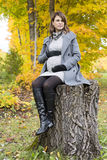 Beautiful pregnant woman in the autumn park stock photography