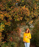 Beautiful pregnant woman in autumn. Royalty Free Stock Photo