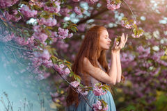 Beautiful pregnant woman in blooming garden Stock Image
