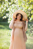 Beautiful pregnant woman Stock Photo