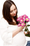 Beautiful pregnant woman with flowers royalty free stock photos