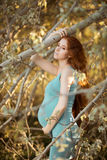 Beautiful pregnant woman in the garden Stock Images