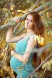 Beautiful pregnant woman in the garden Royalty Free Stock Image