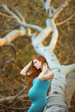 Beautiful pregnant woman in the garden Royalty Free Stock Images