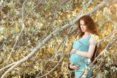 Beautiful pregnant woman in the garden Stock Photos