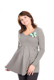 Beautiful pregnant woman in a gray jumper Stock Photography