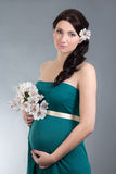 Beautiful pregnant woman in green dress over grey background Stock Photography