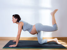 Beautiful pregnant woman gym fitness exercise. Beautiful pregnant woman at gym fitness exercise practicing aerobics on mat Royalty Free Stock Photo