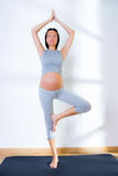 Beautiful pregnant woman gym fitness exercise Royalty Free Stock Image