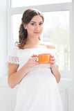 Beautiful pregnant woman having a cup of coffee Stock Photos