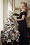 Beautiful Pregnant Woman In A Holiday Dress. Stock Photos