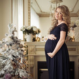 Beautiful Pregnant Woman In A Holiday Dress. Stock Image