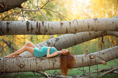 Free Beautiful Pregnant Woman In The Garden Royalty Free Stock Photography - 69586277