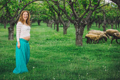 Beautiful pregnant woman laughing and walking on a green meadow Stock Photos