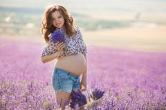 Beautiful pregnant woman in the lavender field. Royalty Free Stock Photos